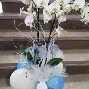Yenimahalle Çiçek Siparişi & Çiçek Gönder beyaz orkide